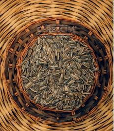Siyah Ayçekirdeği Tuzlu 100 gr