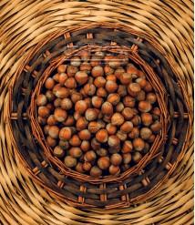 Fındık Çiğ Kabuklu 100 gr