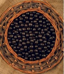Fındıklı Bitter Draje 100 gr